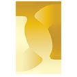 sscpa icon